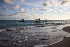 Jangadas (Cecilia A) Tags: alagoas praiadoriacho sãomigueldosmilagres jangada praia beach raft radeau plage canon canont3i canon600d ceciliaa ©ceciliaa