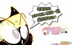發神精 ~ 金牌山賊 (金牌山賊) Tags: 發神精 ~ 金牌山賊