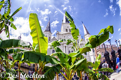 20170423_13523301-Edit.jpg (Les_Stockton) Tags: frenchquarter neworleans vacation louisiana unitedstates us