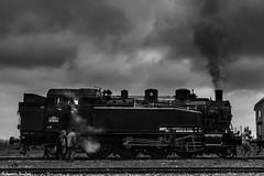 141 TB 424 - AJECTA (Quentin Douchet) Tags: 141tb424 ajecta ferroviaire locomotive locomotiveàvapeur transport blackandwhite motrice noiretblanc steamlocomotive steamtrain train trainàvapeur transportation