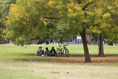 365-108 (Letua) Tags: tres robado otoño bicicleta arbol parque charla amistad friendship three friends bike green autumn fall leaves trees park