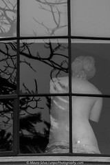 Sculpture through the window (//unpic Photography) Tags: sculpture art street reflection window architecture voyer tree frame branches posing