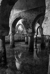 Aljibe en el Palacio de las Veletas, Museo de Cáceres (Leandro Fridman) Tags: aljibe musulmán cáceres agua arquitectura españa europa blancoynegro monocromático byn nikon d60 nikond60 water architecture spain europe blackandwhite bw monochrome