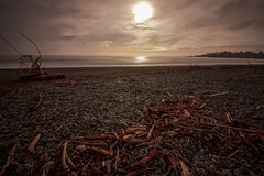 Magical evening walk (Laurie4593) Tags: beach sunset cloudsstormssunsetssunrises driftwood longexposure magical landscape landscapesseascapescityscapes ocean oregon oregoncoast pacific canonrebelt3i canonefs1018mm sand evening cloudy brookings southernoregon rocky reflection