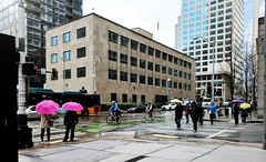 Who says we don't use umbrellas? After this rainy winter and spring, we're coming around to them! (Seattle Department of Transportation) Tags: sdot seattle transportation donghochang rain downtown pedestrians walkers walking crossing umbrella pink bus madison fedex bike multimodal bikers freight yes