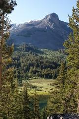 Tioga Lake, California (everettcarrico) Tags: unitedstates california yosemite nationalpark sierranevada mountdana