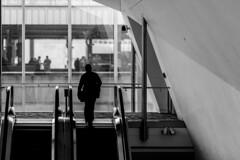 Gone (jack .b.) Tags: street candid man silhoutte geometry bw philly philadelphia escalator city urban nikon d810 sigma13518art nikond810