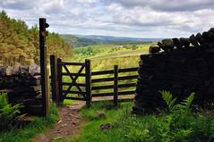 Pendle Gateway (Jason Connolly) Tags: landscape lancashire pendle landscapephotography lancashirelandscape