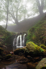 En las entraas del Bosque (Mimadeo) Tags: wild mountain motion tree green fall nature water beautiful rock misty fog stone creek forest river landscape flow waterfall leaf moss spring scenery stream natural outdoor foggy brook flowing cascade