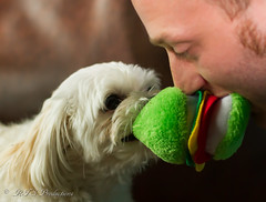 Sharing a Toy! (Rick Smotherman) Tags: family summer dog nature kids canon children outdoors 50mm august 7d canon7d