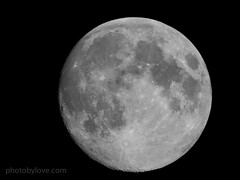 Getting Fuller (photobylove) Tags: moon lunar 1200mm canonsx50