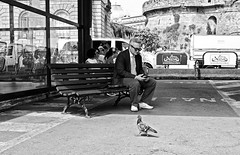 Porto Napoli (Costigliola Michele) Tags: street city blackandwhite bw black fuji candid  streetphotography porto napoli naples fujifilm streetphoto piccione panchina streetbw x100s michelecostigliola