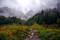 Berge im Nebel (HausHimmelreich) Tags: wood mountain rain fog creek day nebel cloudy hiking berge unterwegs wald hdr wandern regen kleinwalsertal bchlein widderstein gemsteltal haushimmelreich