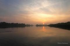La matinale (photosenvrac) Tags: soleil photo lumiere paysage loire brume matin leverdesoleil fleuve ambiance rgioncentre thierryduchamp