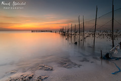 Fish Trap Sunrise! - Kuwait (AlkhashabNawaf) Tags: morning blue sunset sea orange fish seascape colour net beach yellow sunrise landscape colours fuji fujifilm kuwait trap q8 nawaf       14mm     xe1        alkhashab