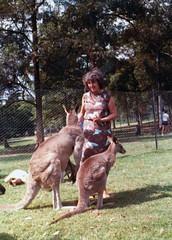 Image titled Jean Hart Australia 1970s