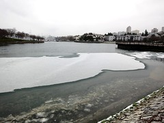 Sea ice in Vancouver (Ruth and Dave) Tags: ocean winter sea snow cold ice water weather vancouver frozen seawall falsecreek inlet granvilleisland weatherphotography