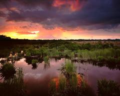 Untouched (josesuro) Tags: sunset film landscapes florida velvia 4x5 2009 largeformat parrish drumscan ebonysv45ti sarasotabradenton jaspcphotography josesuro