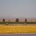 0812 Pasagarda y Cyrus - 50