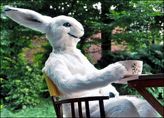 time for tea by tioh (Tiohkatrah) Tags: trees white snow rabbit bunny smile grass animal garden fur relax cub costume furry hare sitting tea anthro fursuit anthropomorph fursuiter tioh