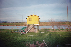 , (Benedetta Falugi) Tags: wood house green film home yellow analog 35mm project river tds 22mm benedettafalugi fromrivertosea