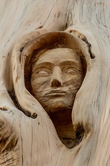 Tree carving - man with a hood (Mike Wilson Photography) Tags: wood man tree carving hooded
