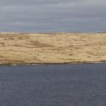 Loch Tearnait thumbnail