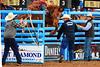 Coming Out High (RawTsnPhoto) Tags: tucsonrodeo rodeo tucson arizona action rodeoaction prorodeo prca bronc saddlebronc rawtsnphoto