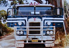 photo by secret squirrel (secret squirrel6) Tags: byerstransport secretsquirrel6truckphotos craigjohnsontruckphotos australiantruck bigrig kenworth cabover kenworthtruck stripes blueandwhite olddays oldschool kw coe doors trucking thorpdale potatoes summer hot 1980s 1984 classic