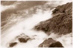 Froth vdb (efo) Tags: bw froth surf rocks bay pacific ocean longexposure vdb vandykebrownprint altprocess film zorki6