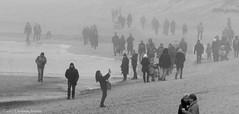Slow walk in the fog (GintarasJ) Tags: rūkas fog palanga lietuva lithuania winter žiema vasaris february sea baltic balticsea baltijosjūra kompozicija composition figurative