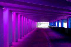 _DSC2661 (durr-architect) Tags: tunnel vision herman kuijer light installation dutch underpass zutphen netherlands architecture art designer artist colourful luminescent motorists cyclists pedestrians time space kcap baljon baauw royal haskoning dhv bam prorail train railway