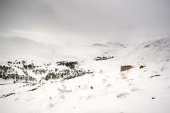 Glenn Luibeg (gerainte1) Tags: glennluibeg cairngorms scotland mountains winter snow colour