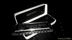My new instrument. Harmonica Hohner 'Marine Band 1896' C, made in Germany. Beautiful sound! (PY6RDM) Tags: harmonic harmônica gaita song bw black white