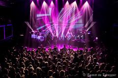10/03/2017 - Memphis Maniacs @ Den Haag (Femke de Schepper) Tags: memphis maniacs clubtour maximum mashup live music paard van troje den haag