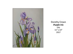"Purple Iris • <a style=""font-size:0.8em;"" href=""https://www.flickr.com/photos/124378531@N04/33182564703/"" target=""_blank"">View on Flickr</a>"
