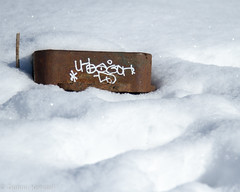 Tag (bratli) Tags: tag tagging graffiti blackmud ravine snow spring