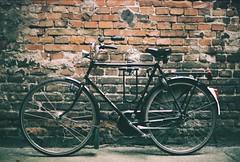 Gazelle (pashelcalatsha) Tags: 118newfd50mm canonae1 cracow bike wall old 90s 20s