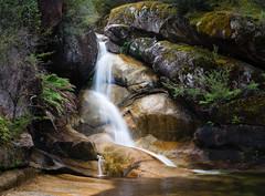 Ladies Bath Falls Bright Mt Buffalo National Park (laurie.g.w) Tags: ladiesbathfalls mtbuffalonationalpark high country rocks water victoria australia creek stream waterfall cascade