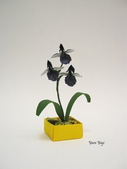 Tiny (Yara Yagi) Tags: origami papel paper orchid orquídea flor flower