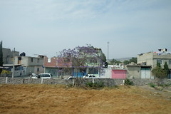 DSCF1314 (Steven+Alison Hoober) Tags: colorfulhouses mexico