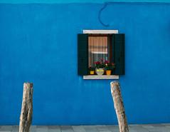 Blue house, Burano (V Photography and Art) Tags: blue bluewall wall window buranoisland burano island venice venezia colour texture windowsill flowerpots reflection shutters