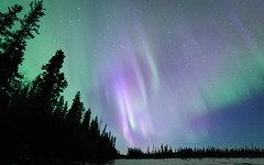 Purple Swirl (frostnip907) Tags: auroraborealis northernlights alaska aurora auroras night astrophotography sky nightsky longexposure purple green