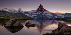 The Matterhorn at dusk (cfaobam) Tags: sonnenuntergang sunset alpenglow alpen berge bergsee european larch fall gebirge herbst lac lake landschaft matterhorn see stellisee zermatt alpes arbres automne montagne mountains neige schnee snow alps berg schweiz wasser stein stone landscape europe europa nature national geographic cfaobam water travel photography magic light rock steine felsen outdoor felsformation dusk dämerung globetrotter