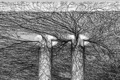 Wilder Wein Ranken (R.Xof) Tags: architektur berlin berlintiergarten dach efeu gebäude kanzleramt natur object pflanze plant planta strauch vegetal sw