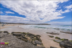 DSC_2348_X (Design Board Photography) Tags: landscapes sea bondibeach beaches designboardphotography