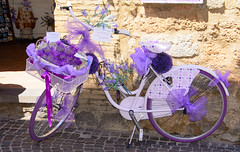 Too much purple?? (Geert Van Keymolen) Tags: lavender lavendel orvieto umbria italië it italia purple paars fiets bike flowers bloemen herbs kruiden summer zomer umbrië travelstory
