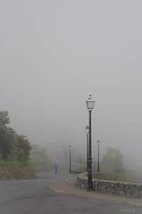 Niebla (inma F) Tags: eltanque lomomolino mirador paisaje vista niebla fog mood road walker tenerife landscape farol gente camino ambiente
