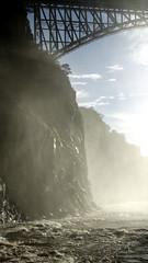 Bright misty creek