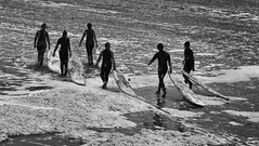 1 (rosemarysedgwick) Tags: water surfer waves sea